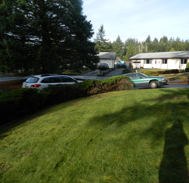 This is what our front yard looked like before we bought the house. I prefer the look with the garden box. Grass is such a waste of resources.
