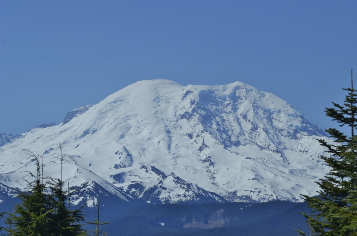 Mount Rainier looks different from this part of the state, as you are seeing the north face of the mountain. Not the same view you get from Seattle or Tacoma. (Photo by Craig Craker)