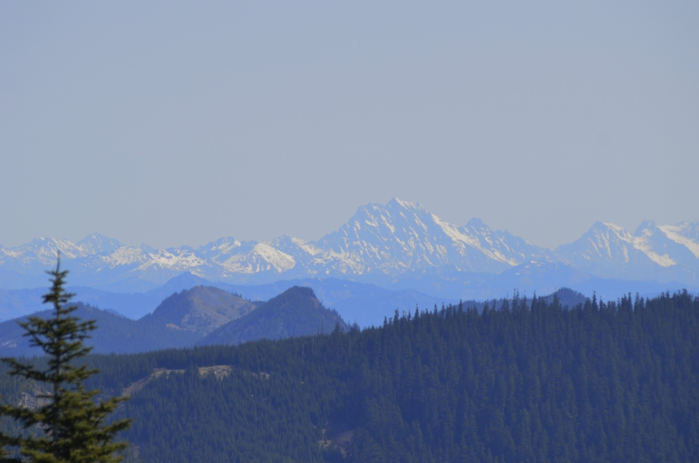 The Central Cascades in the distance. There are 360-degree views from the top of Suntop Mountain. On a clear day you can see Mount Baker 150 miles to the north. We saw her, but she was a bit out of range for my camera. (Photo by Craig Craker)