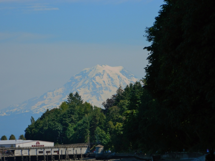Mt. Rainier in the spring from Owen Beach in Point Defiance Park in Tacoma. (Photo by Craig Craker)