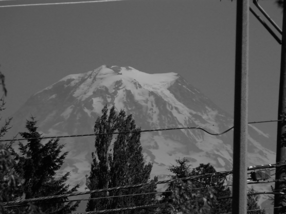 I'm not entirely sure where this was taken. I think on 19th Street in Tacoma or Fircrest. But that's the beauty of Rainier. You are driving along some random city street and you look over and suddenly - bam! - there is Rainier in all her glory. (Photo by Craig Craker)