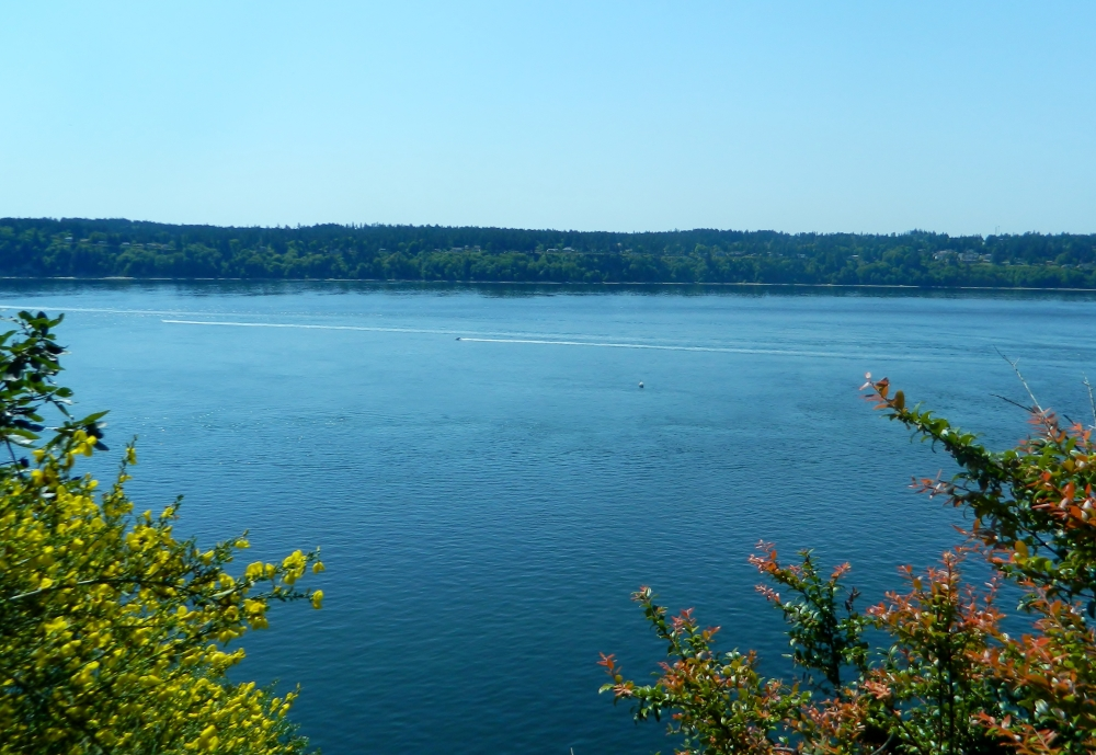The views of the Tacoma Narrows from high on the bluffs in Point Defiance Park are stunning.