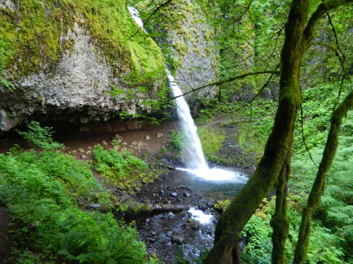 Ponytail Falls with the hiking trail behind it. Really beautiful and peaceful scenery, as few tourists bother to put in the effort to climb the bluff to see this area.