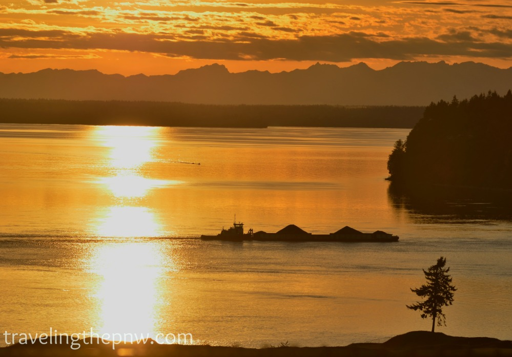 I waited until this tug boat and barge were framed by the sun on the water and the tree at Chambers Bay Golf Course to give a bit of action to this shot.