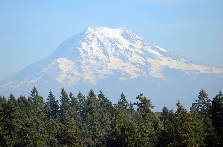Mount Rainier floating above the trees. Veronica took this on her way home from work one day near the Fred Meyer on Bridgeport in University Place. (Photo by Veronica Craker)