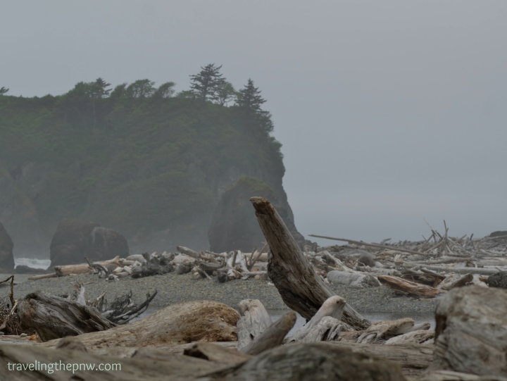There a metric ton of driftwood on Ruby Beach. I can only imagine the violent winter storms that toss these giant logs onto the beach.