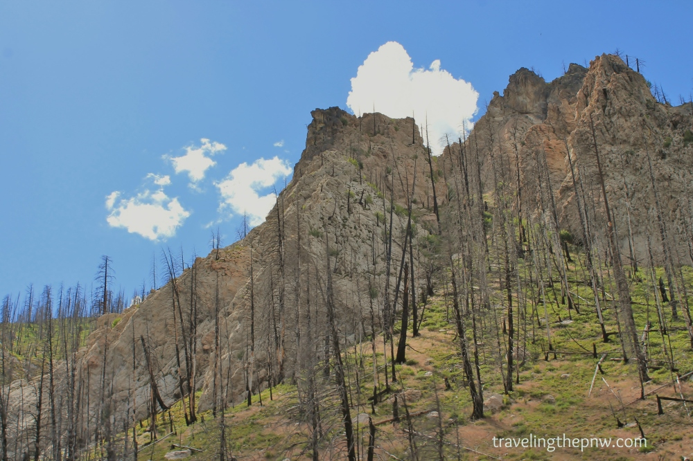 At nearly a mile high, the terrain offered burnt out trees, rolling hills and craggy rock outcrops. Combined with the blue sky, it was beautiful to say the least.