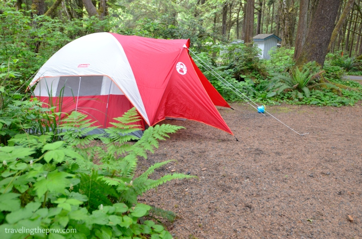 Our tent all set up in the forested part of Kalaloch Beach campground.