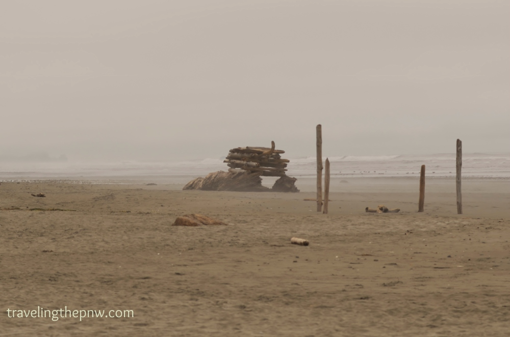 Crazy structure built out of driftwood on Kalaloch Beach.