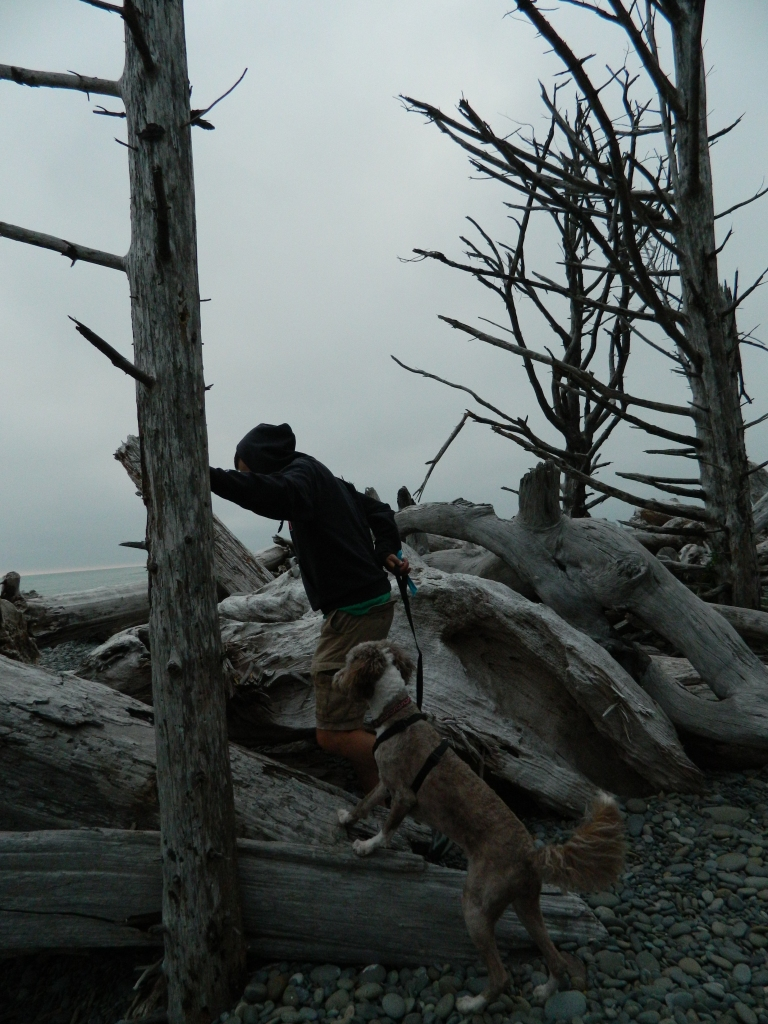 Molly and I trying to scale the driftwood to get to the beach.