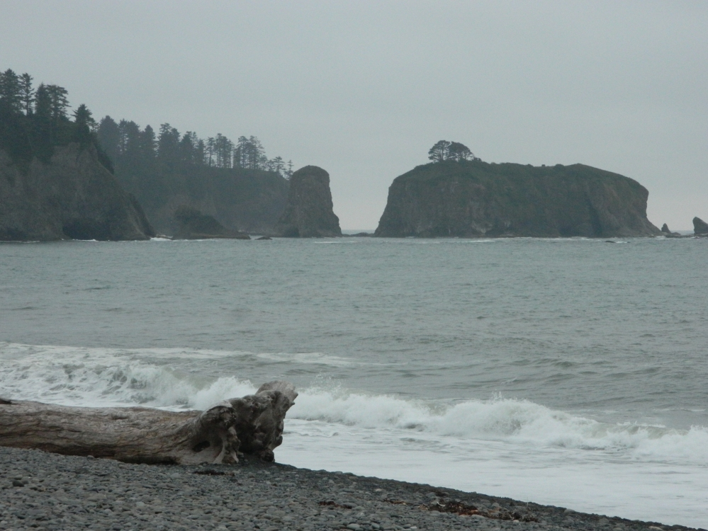 Rialto Beach has plenty of sea stacks just off the coast, offering a look back at wilder times.