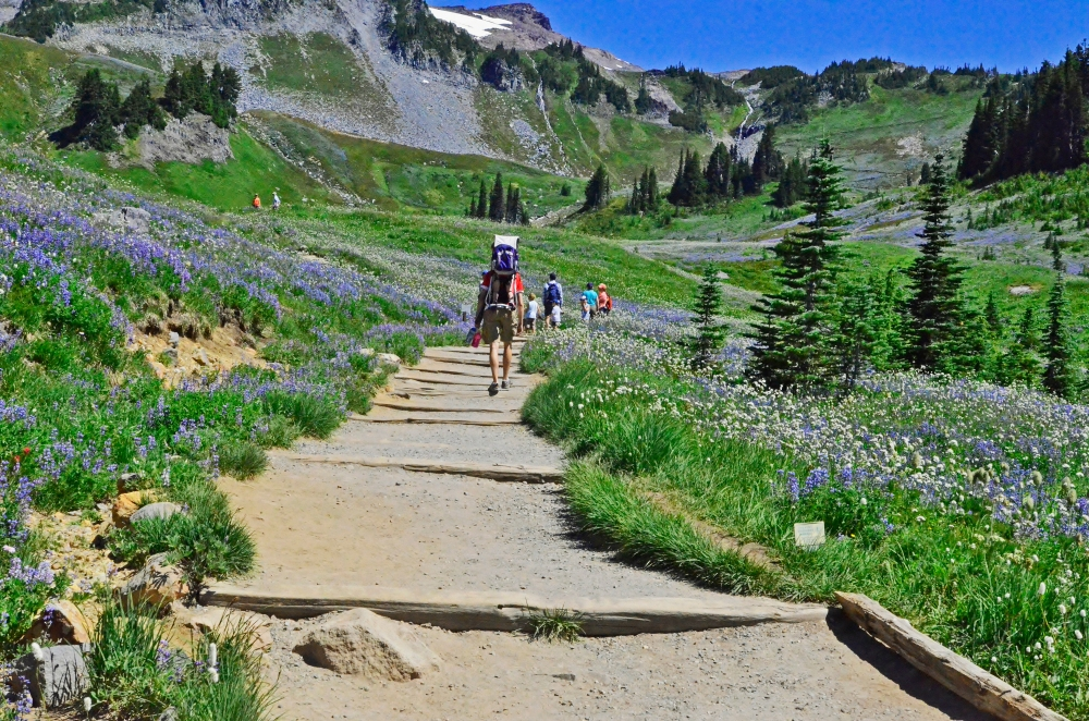The main trails around the Jackson Visitor Center are paved, but if you want to get away from the tourists you will have to hoof it up the dirt and gravel trails.