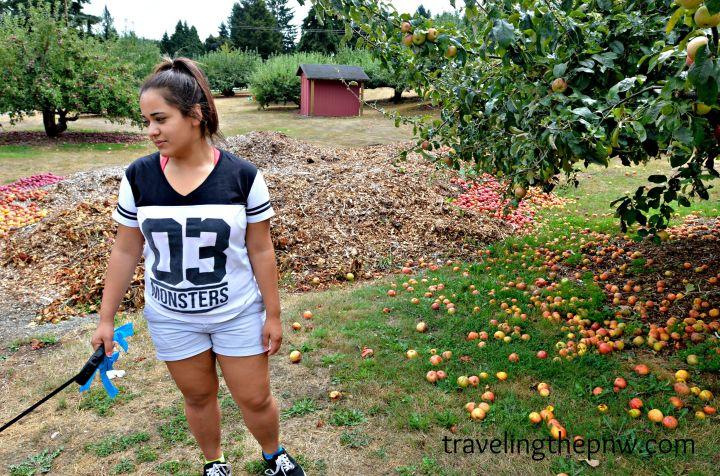 applepark9