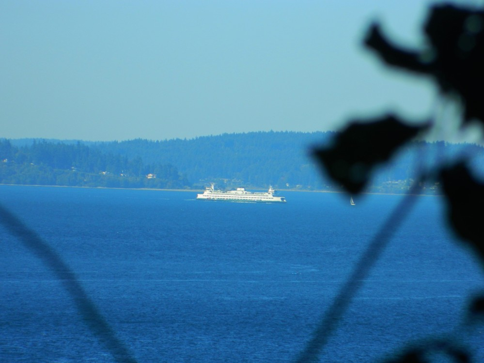 A ferry in the distance from Lincoln Park.