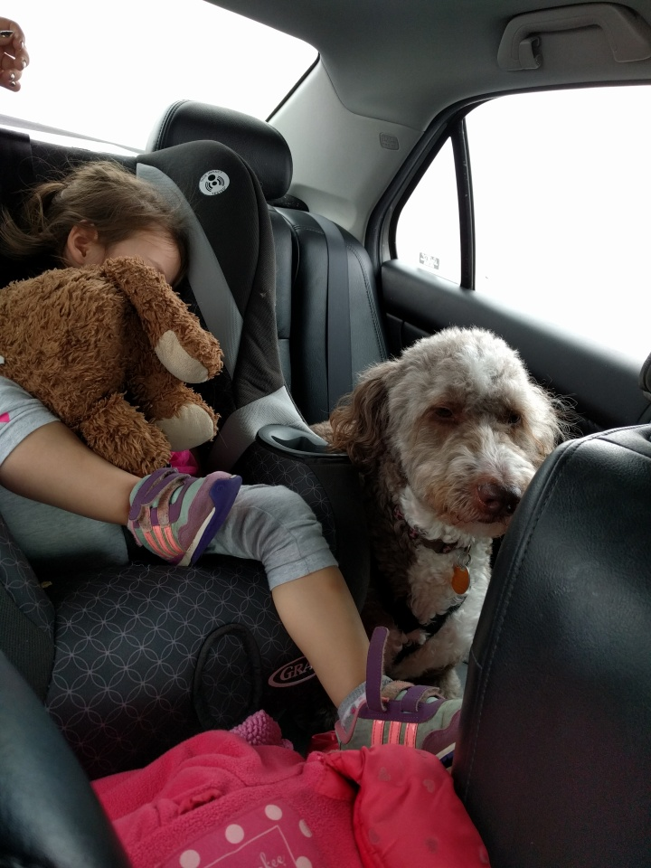 You know it was a good trip when your kid passes out immediately in the car on the way home. Now, if only Molly could learn to sleep in the car.