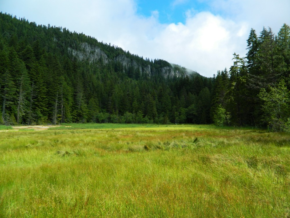 This giant meadow showcases everything from a wetland to a marsh to beaver dams to the discolored earth because of the area mineral springs.
