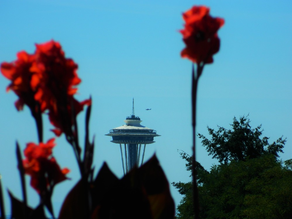 There are lots of big views of the Space Needle from Volunteer Park.