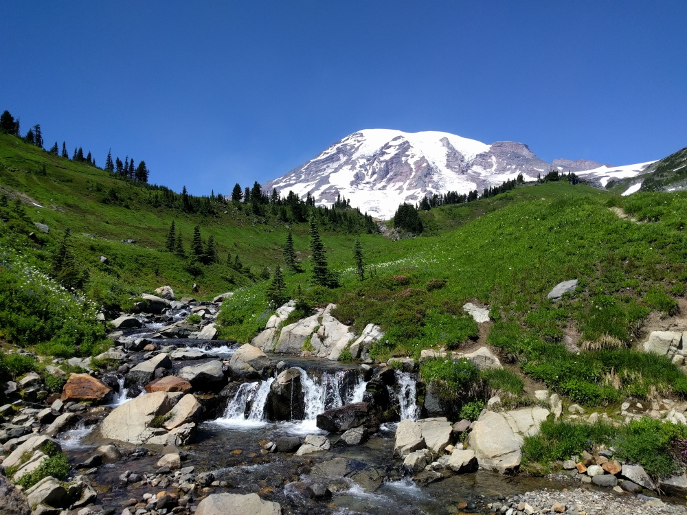 Edith Creek gurgles in the foreground as Mt. Rainier looms in the background.