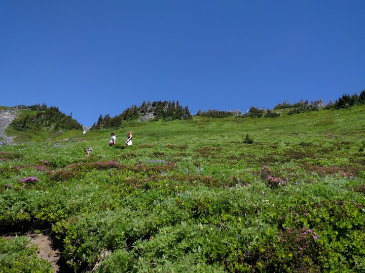 This is the hill that the Golden Gate Trail switchbacks up. It is steep to say the least.