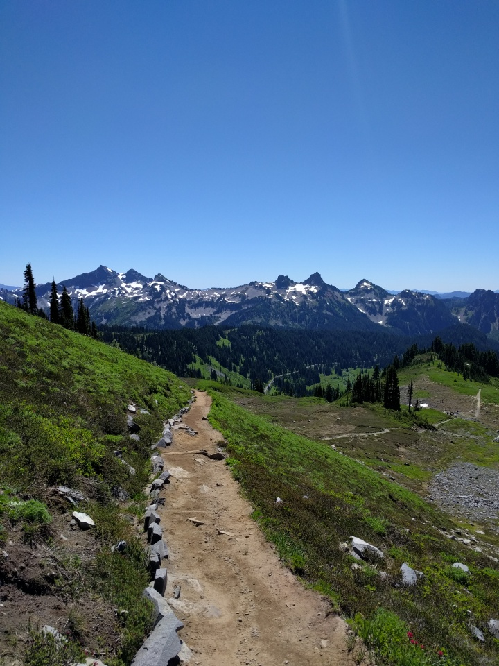 Hiking down the switchbacks was not only easier than going up, but the views were stunning since the fog had lifted.