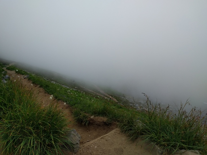 The fog on the switchbacks gave the Golden Gate Trail a surreal feeling.