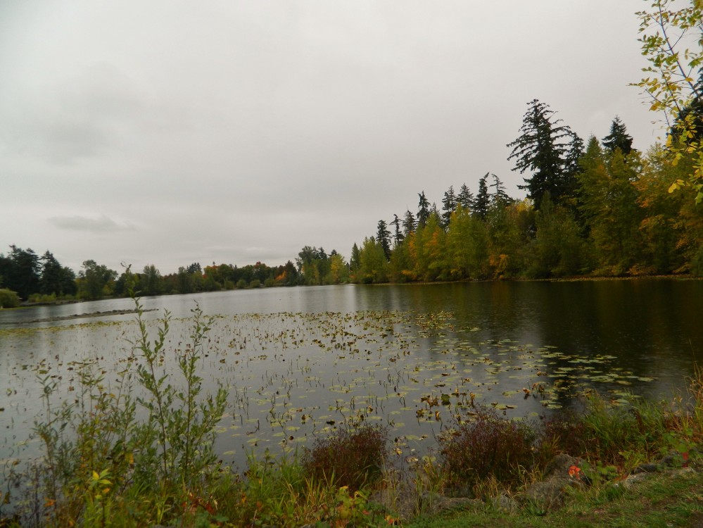 Wapato Lake in South Tacoma has been used as a swimming hole since at least the 1870s.
