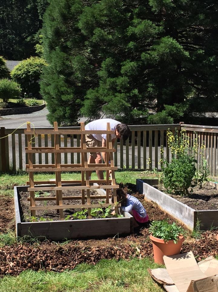 gardenwork2
